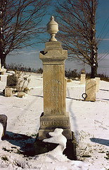 Grave of Teunis Luikenhuis in Clymer, NY.